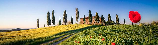 Ruben Drenth Italy
