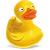 ducky.png