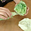 Thumbnail: Tokyo Writable Lettuce