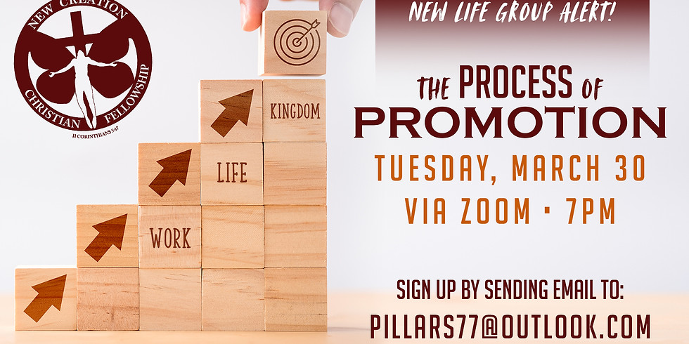 NEW LIFE GROUP: PROCESS TO PROMOTION