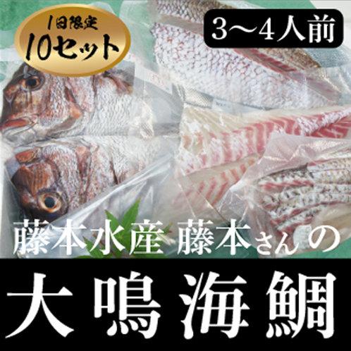 絶品!藤本さんの大鳴海鯛(3〜4人前)
