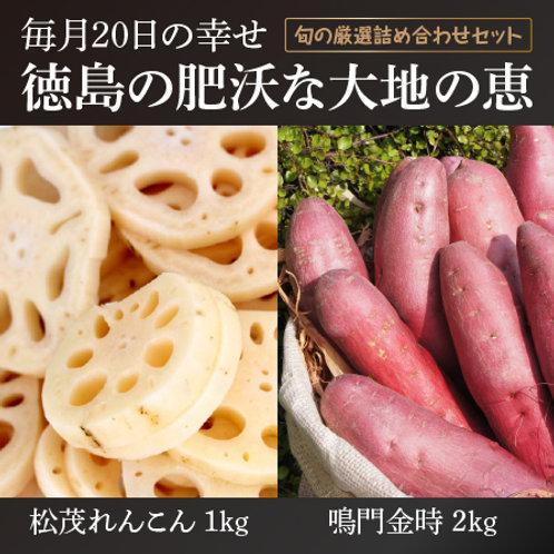 旬の厳選野菜詰め合わせ[松茂青果]