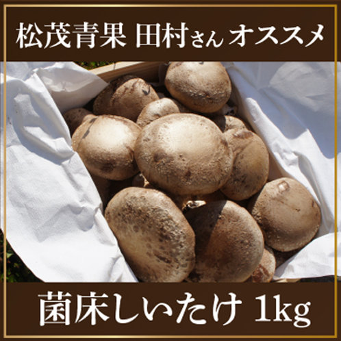 菌床しいたけ 1kg(約24枚)