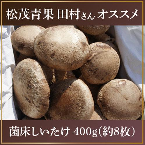 菌床しいたけ 400g(約8枚)