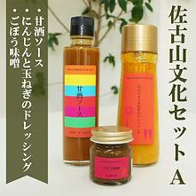 sakoyama_a.jpg