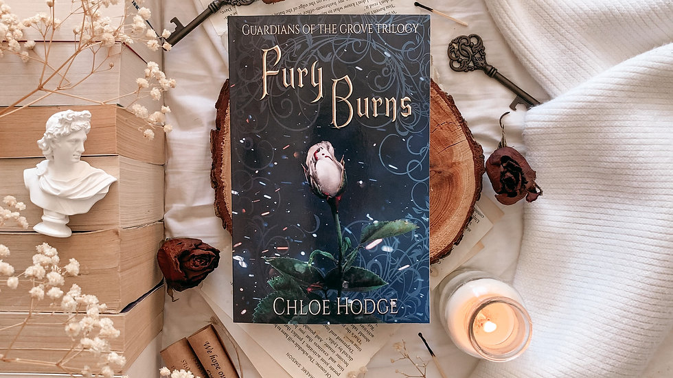 Fury Burns paperback (3) Signed and with free bookmark.