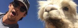 client&llama