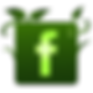 green_facebook_logo2.png
