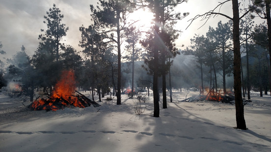 Wildfire Mitigation and Defensible Space