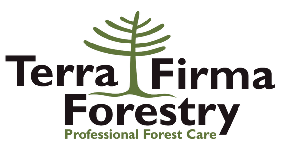 Terra Firma Forestry