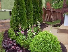 trees-shrubs.jpg