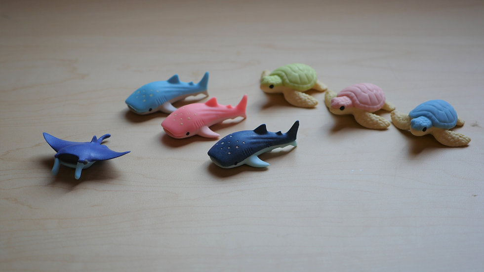 Iwako Sea Animal Erasers