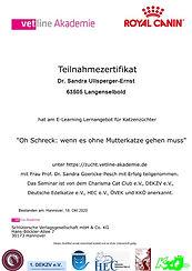 Vetline Akademie - Oh Schreck.jpg