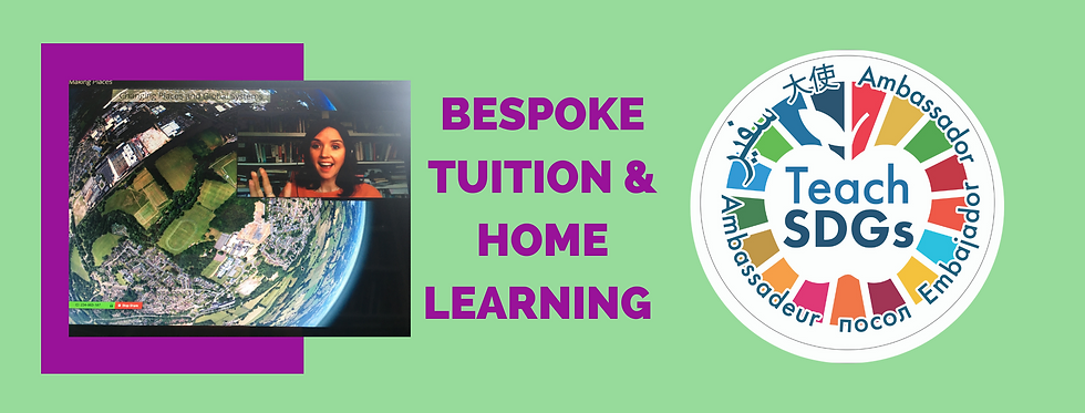 Bespoke Tuition & Home learning (3).png