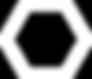 White Icon Logo.png