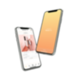 iPhone X mockup hover both.png