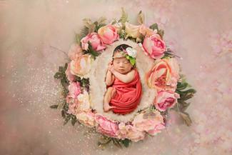 best newborn photographer
