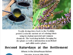 August 10th: Learn How to Dye Cotton using Native Florida Plants