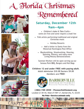 A Florida Christmas Remembered - For all the children and the young at heart!