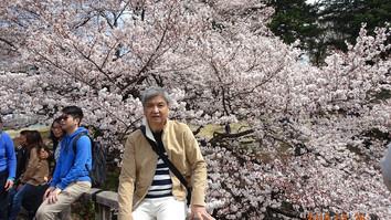 桜をバックに記念写真