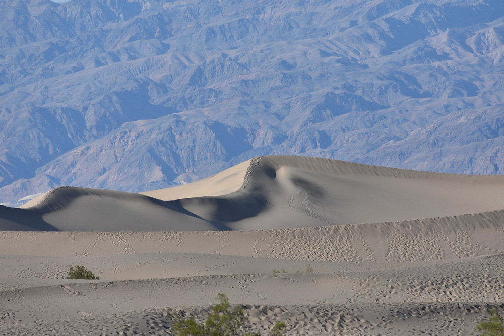 Mesquite Flats Sand Dune