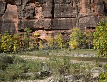 Narros Trail along Virgin River and Cliffs