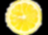 Lemon%204_edited.png
