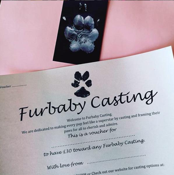 Furbaby Casting Gift Voucher