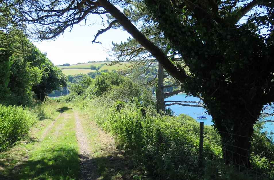 Snape Point Salcombe