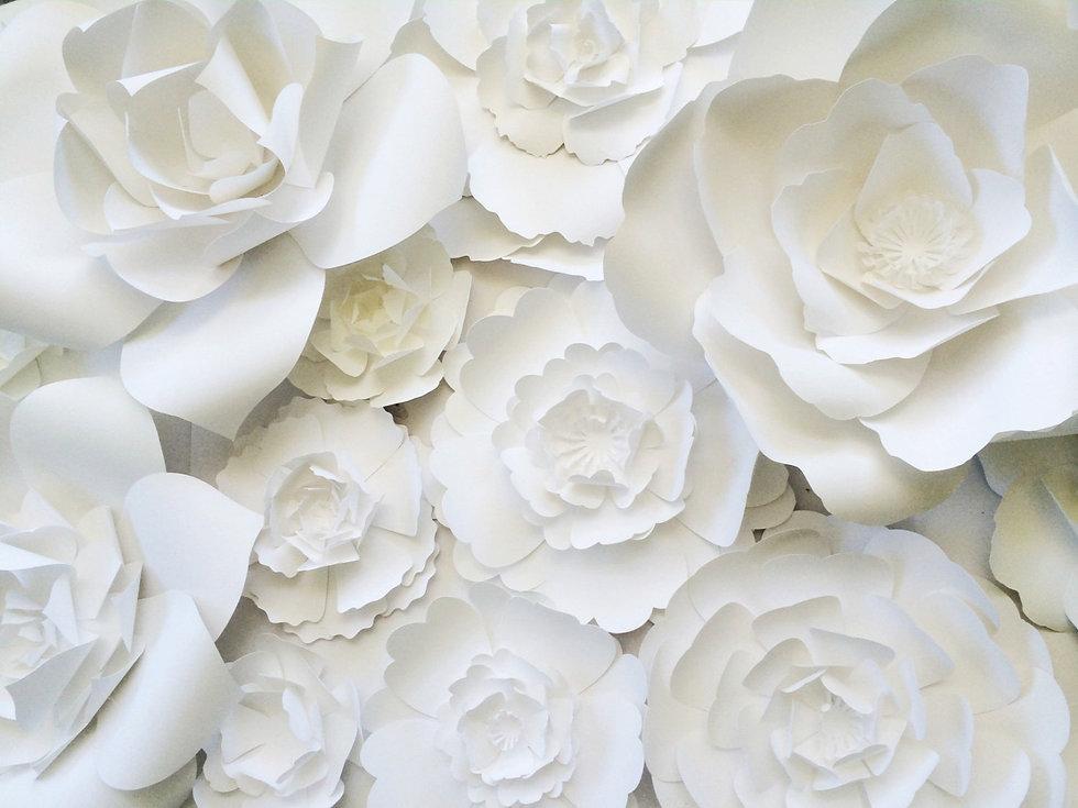 fundo_flores.jpg
