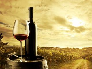 Unitat 5 - La maduració de la vinya