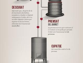 Elaboració del vi negre - by Torres