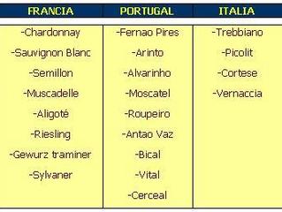 Unitat 3 - Principals raïms de vinificació