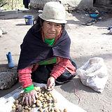 Maria Esther Sysabucha Ecuador.jpg