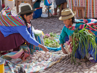 WCCN Strengthens Commitment to Women with Pro Mujer Investment