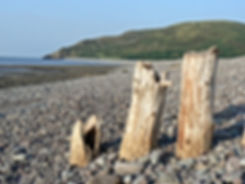 Porlock Weir 3 posts