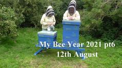My Bee Year 2021 pt6