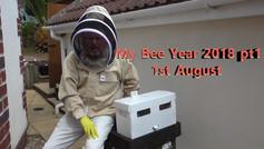My Bee Year 2018 pt1