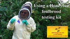 Using a Honeybee foulbrood testing kit