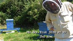 My Bee Year 2020 pt10