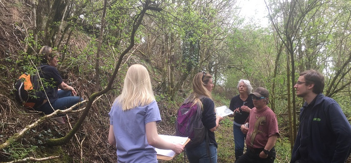 On site discussion with Plantlife team.j