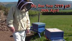 My Bee Year 2019 pt5