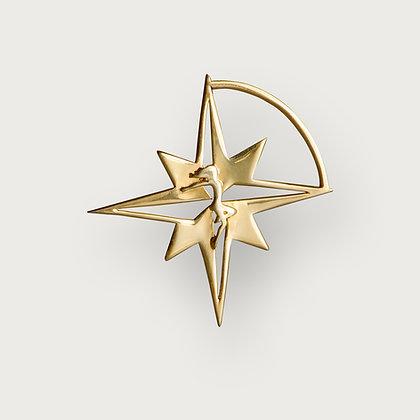 Compass Star brooch