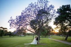 Pesiri Photo Wedding Rec 18