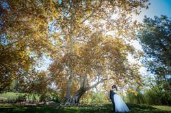 72 Diamond Bar weddings-50.jpg
