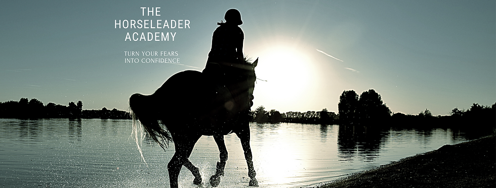 The HorseLeader Academy (3).png