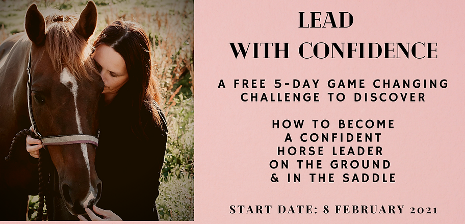 regain the trust a 5 day free challenge