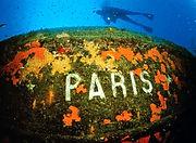 Paris Wreck Kemer
