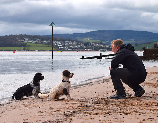 The Exmouth Dog Walker