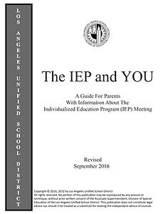 The IEP and You.PNG